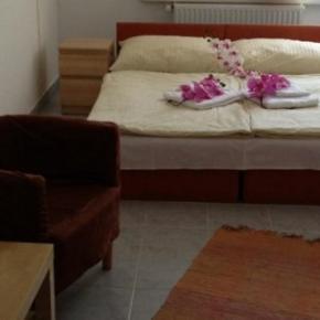 廉价旅馆 - Hotel Timon