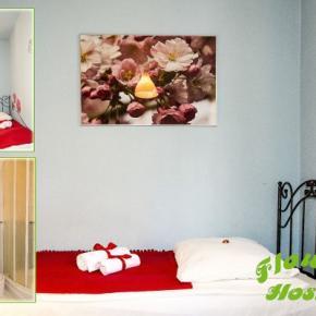 廉价旅馆 - Hostel Flower