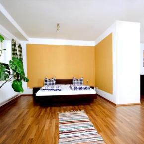 廉价旅馆 - Sleepy Lion Hostel, Youth Hotel and Apartments