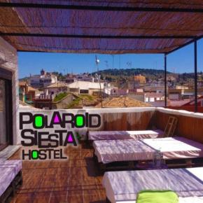 廉价旅馆 - Polaroid Siesta Hostel
