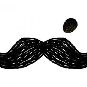 廉价旅馆 - Moustache Hostel Jaipur