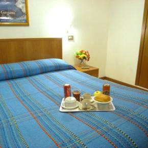 廉价旅馆 - Hotel Adelchi