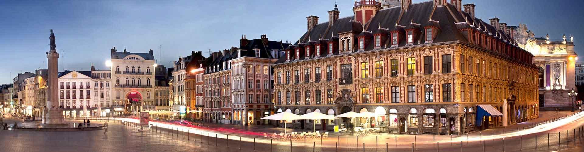 里尔 – 里尔佛郎德勒火车站附近的宾馆。里尔地图,里尔每间宾馆的照片和评价。