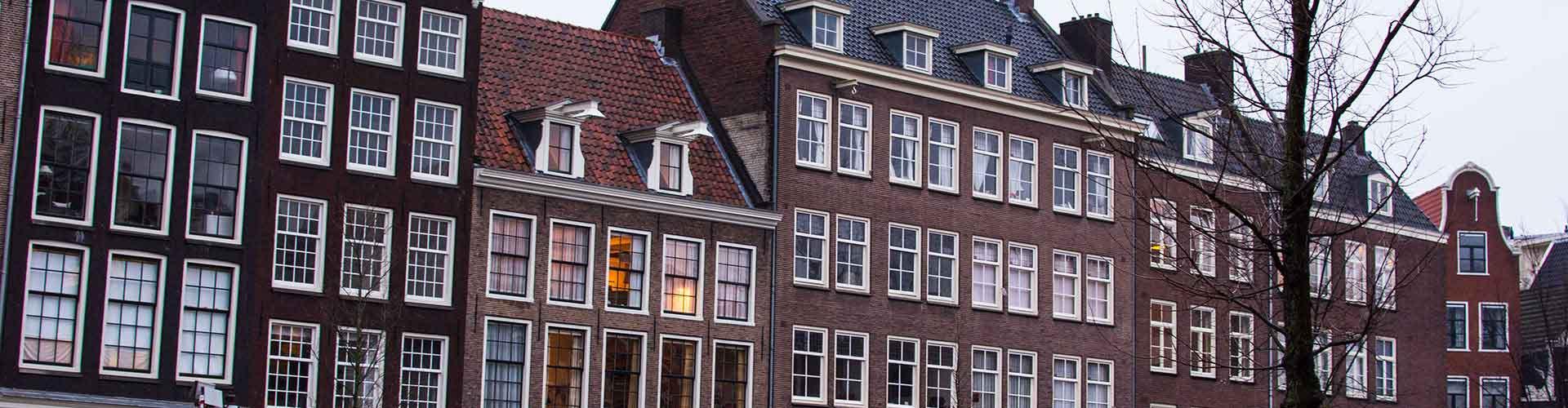 阿姆斯特丹 – 安妮弗兰克之家附近的宾馆。阿姆斯特丹地图,阿姆斯特丹每间宾馆的照片和评价。